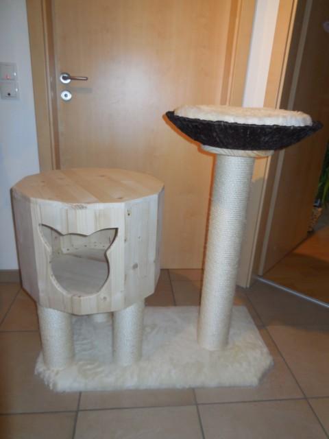 Liegeplatz kuschlig an kleinem Kratzbaum mit Katzenbox