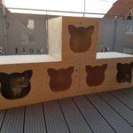 Holzhöhlen für Katzen