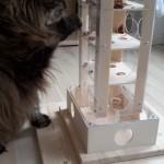 Intelligenzspiel für Katzen Spielzeug