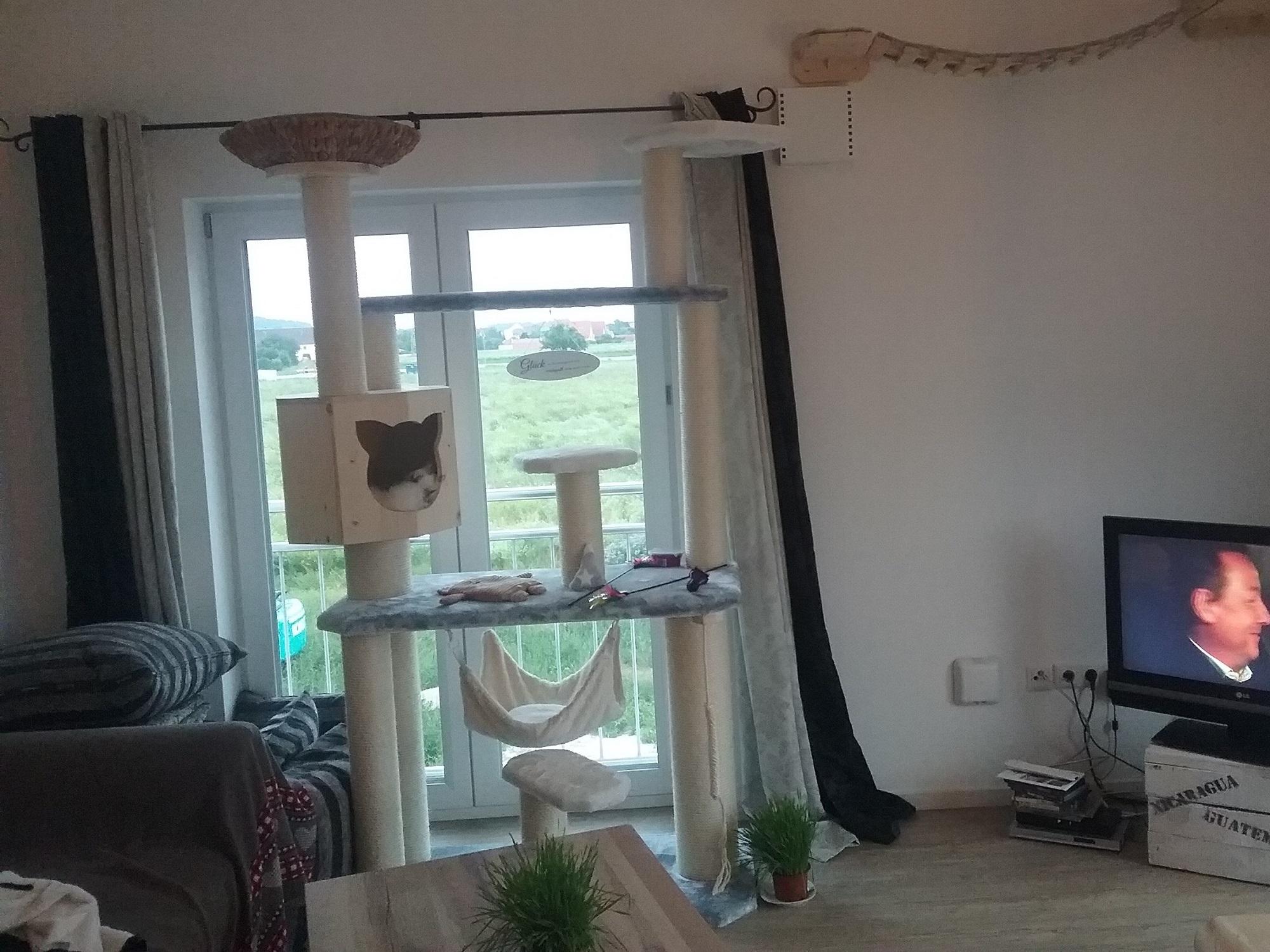 katzenbaum h hle kissen f r katzen liegemulde stabiler kratzbaum. Black Bedroom Furniture Sets. Home Design Ideas