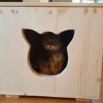 Katzenhöhle für Außen