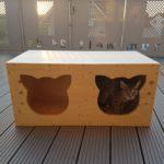 Katzenhöhlen