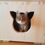 Katzenhaus für Außen