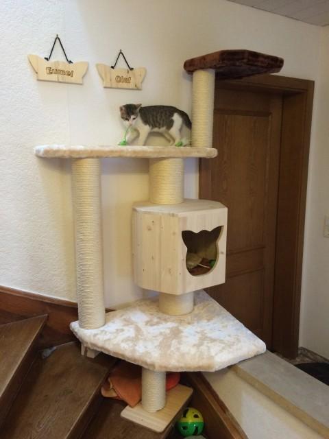 Kratzbaum klein für 2 Katzen mit großer Holzhöhle sowie Liegefläche