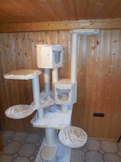 Kratzbaum Sonderanfertigung für mehrere Katzen