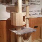 Kratzbaum günstig zu verkaufen Massiver Kratzbaum Katzenbaum stabil
