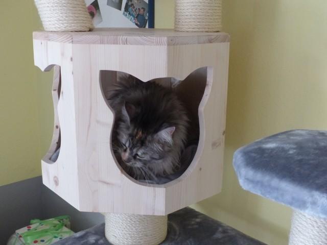 Geräumige Holzhöhle auch für mehrere Katzen geeigent