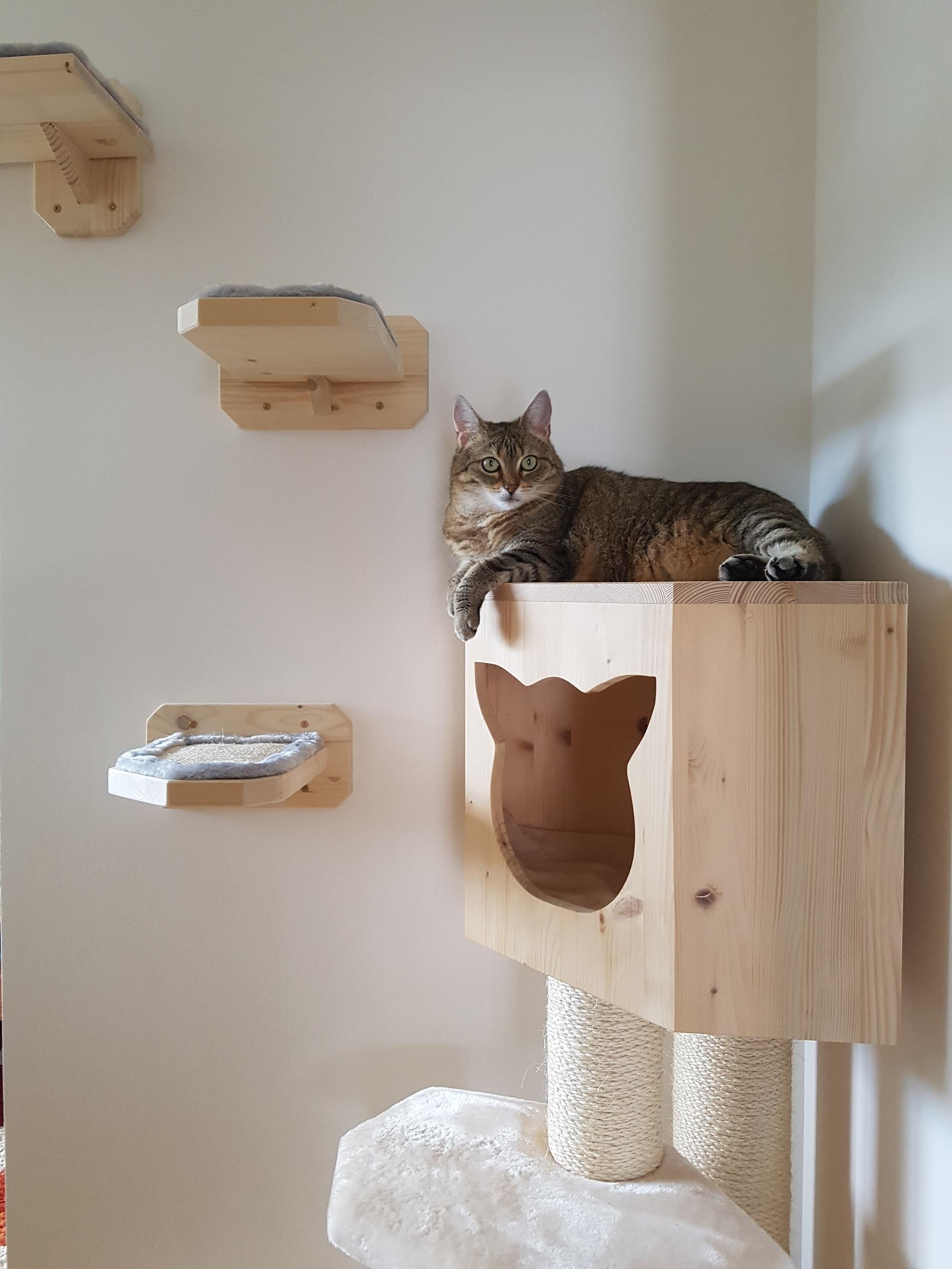 kratzbaum mit h hle katzenbaum mittel naturkratzbaum sonderanfertigung. Black Bedroom Furniture Sets. Home Design Ideas