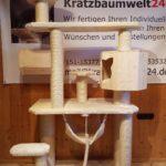 Kratzbaumwelt