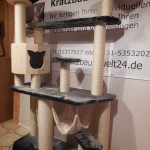 Massiv Kratzbaum stabil