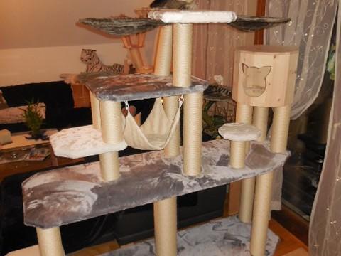 Krtzbaum Gigantisch extrem groß, KRatzbaum sehr stabil, Kratzbaum für schwere Katzen, Kratzbaum über 2 Meter, Kratzbaum ohne Deckenspanner