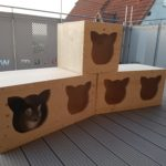 Schlafplatz für die Katze