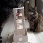 Spiel für Katzen Intelligenzbox Turm Katzen