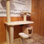 Stabiler Kratzbaum für große Katzen