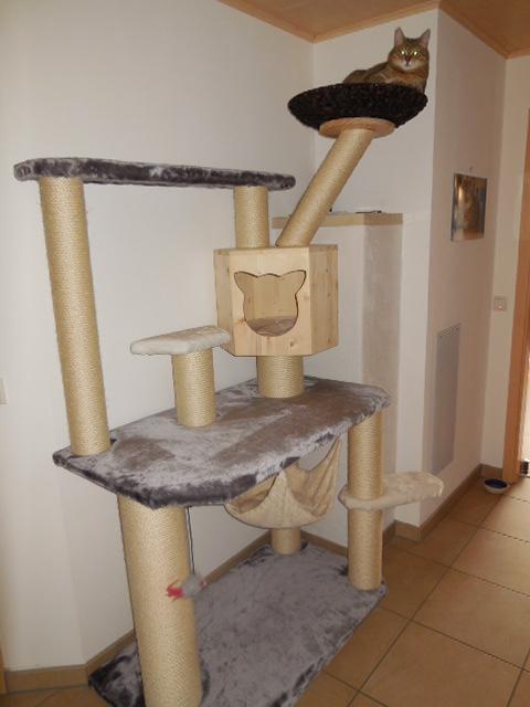 kratzbaum gross stellasturm1. Black Bedroom Furniture Sets. Home Design Ideas