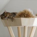 Naturkratzbaum für Katzen