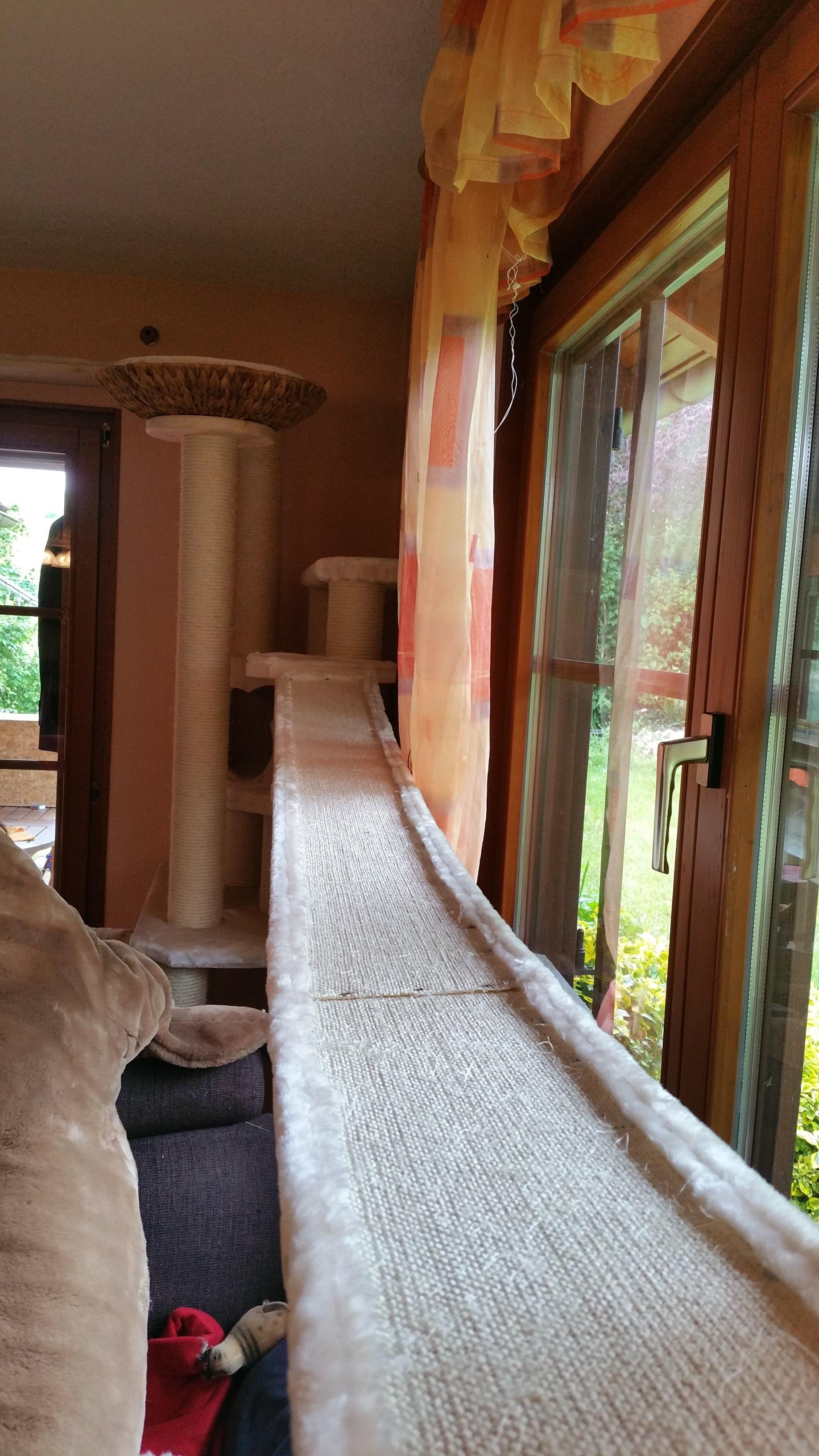 catwalk laufsteg h ngebr cke f r katzen massiv gefertigt. Black Bedroom Furniture Sets. Home Design Ideas