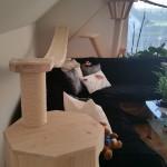 Holzhöhle für Katzen Wandkratzbaum Katzenlandschaft