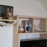 Kletterwand für Katzen Wandkratzbaum Laufsteg für Katzen