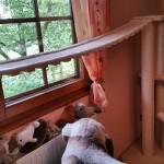 Kratzbaum Catwalk für Katzen stabil Sisalseil