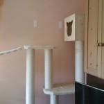 Kratzbaum maßgefertigt individuell große Katzen stabil Plüsch