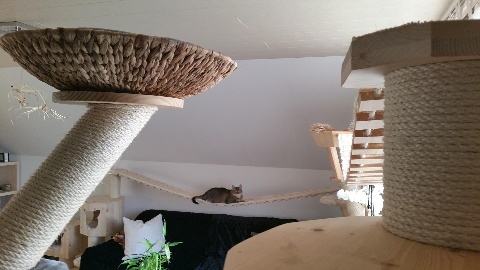 Kratzbaum Hersteller Sonderanfertigung Katzenlandschaft
