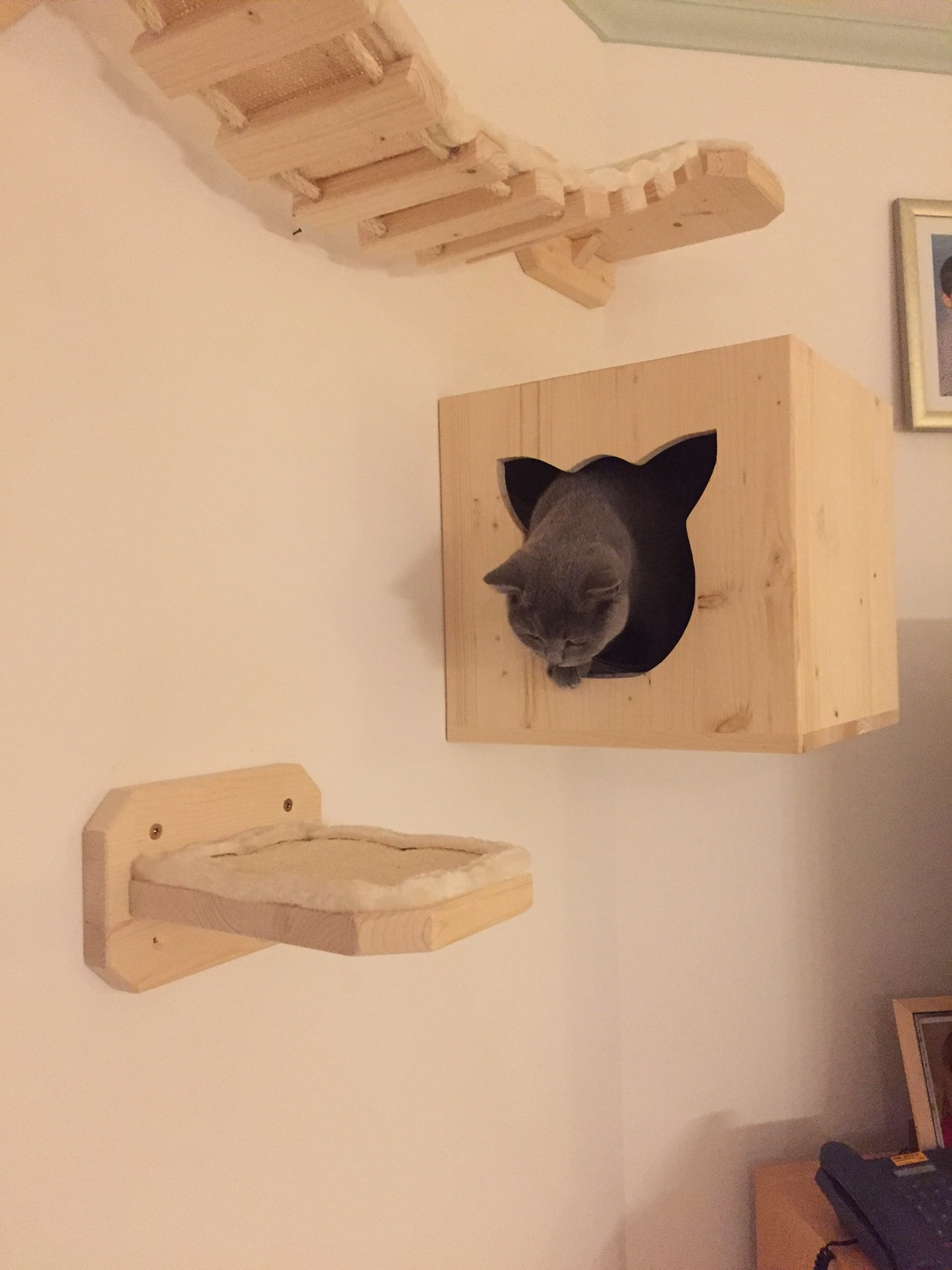 kratzlandschaft kletterlandschaft f r katzen h hle f r katzen wandkratzbaum. Black Bedroom Furniture Sets. Home Design Ideas