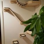 Wandelemente für Katzen stabil Holz Wandkratzbaum