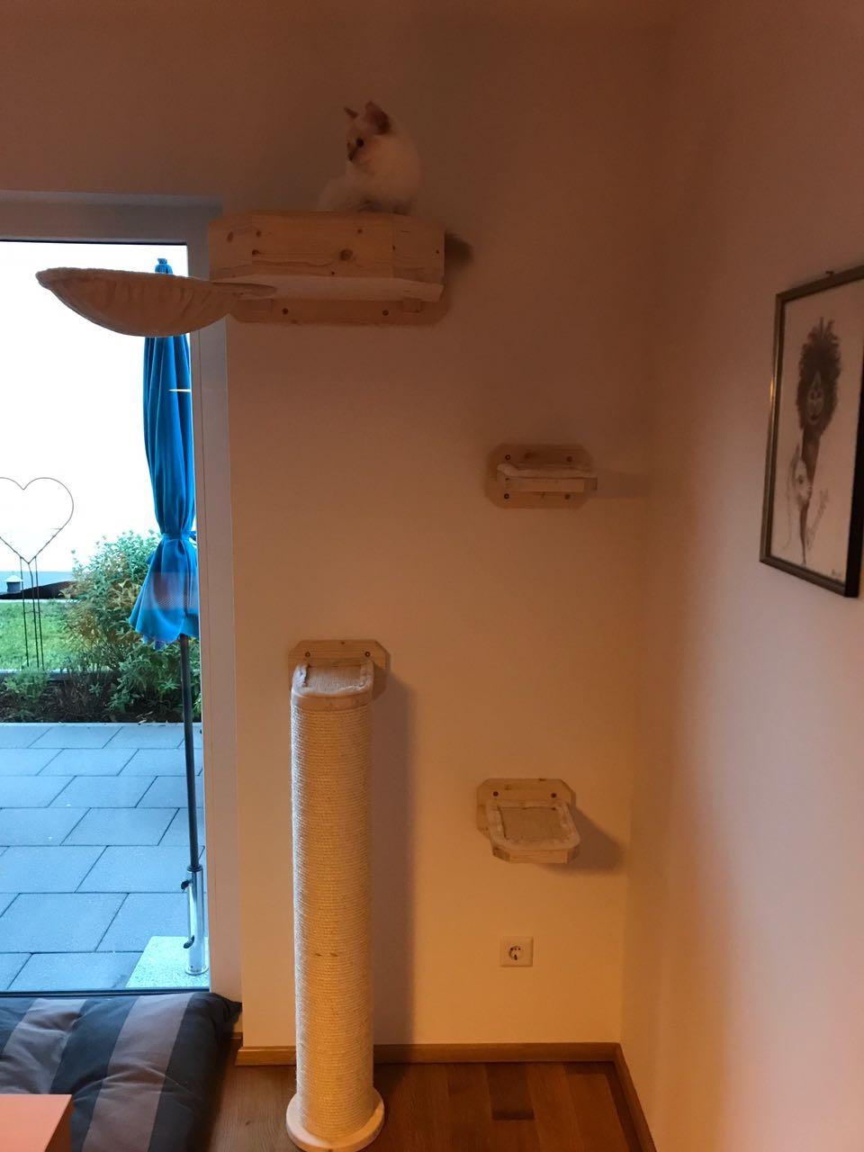 wandkratzbaum f r katzen bettchen dicker stamm f r katzen. Black Bedroom Furniture Sets. Home Design Ideas