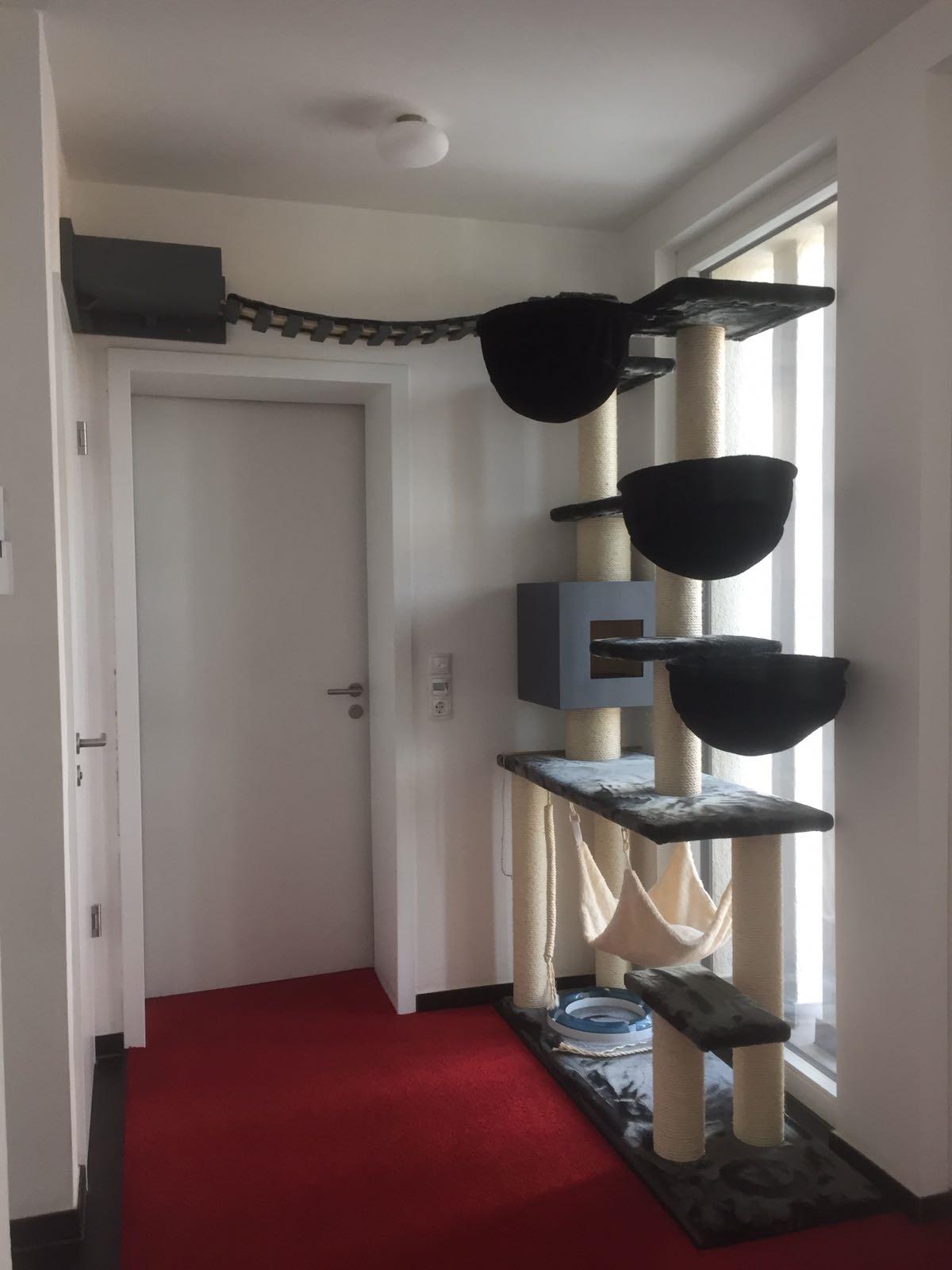 edelkratzbaum massiv gefertigt stabiler kratzbaum exklusivkratzbaum. Black Bedroom Furniture Sets. Home Design Ideas