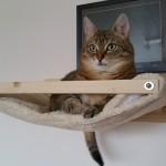 Kratzbaum stabil massiv Wandhalterung Katzen