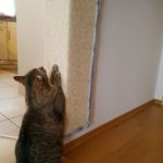 Kratzbrett, Kratzmatte, Sisalteppich, Kratzbretter für Katzen