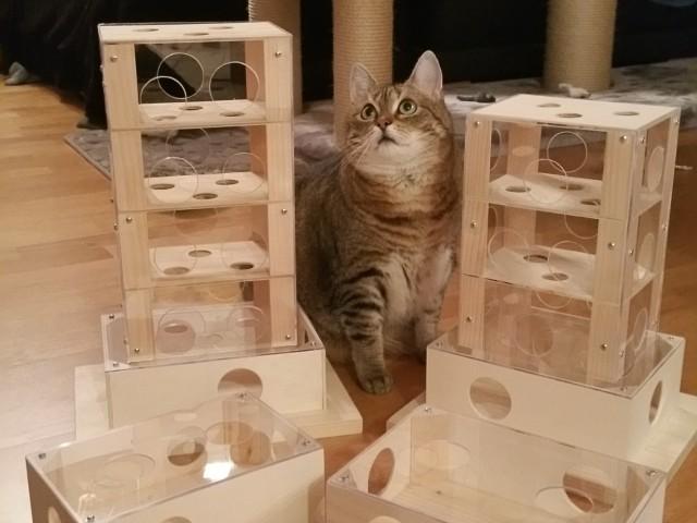 Katzenspielzeug Fummelbrett Intelligenzspielzeug Für Katzen