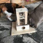 Fummelbox für Katzen