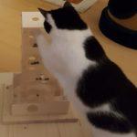 Leckerlieturm für Katzen