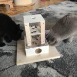 Fummelbox für Leckerlies