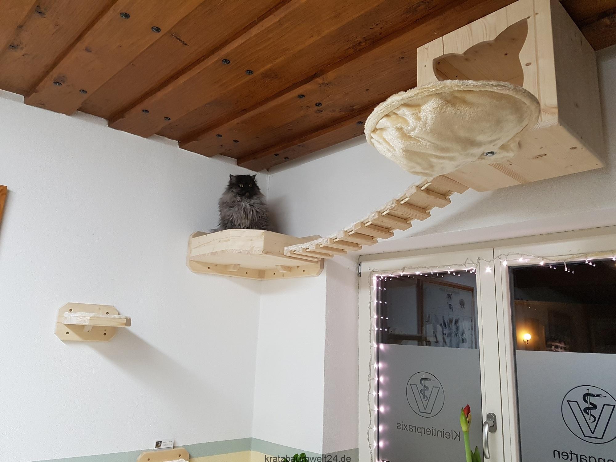 kletterwand f r katzen wandkratzbaum kletterlandschaften. Black Bedroom Furniture Sets. Home Design Ideas