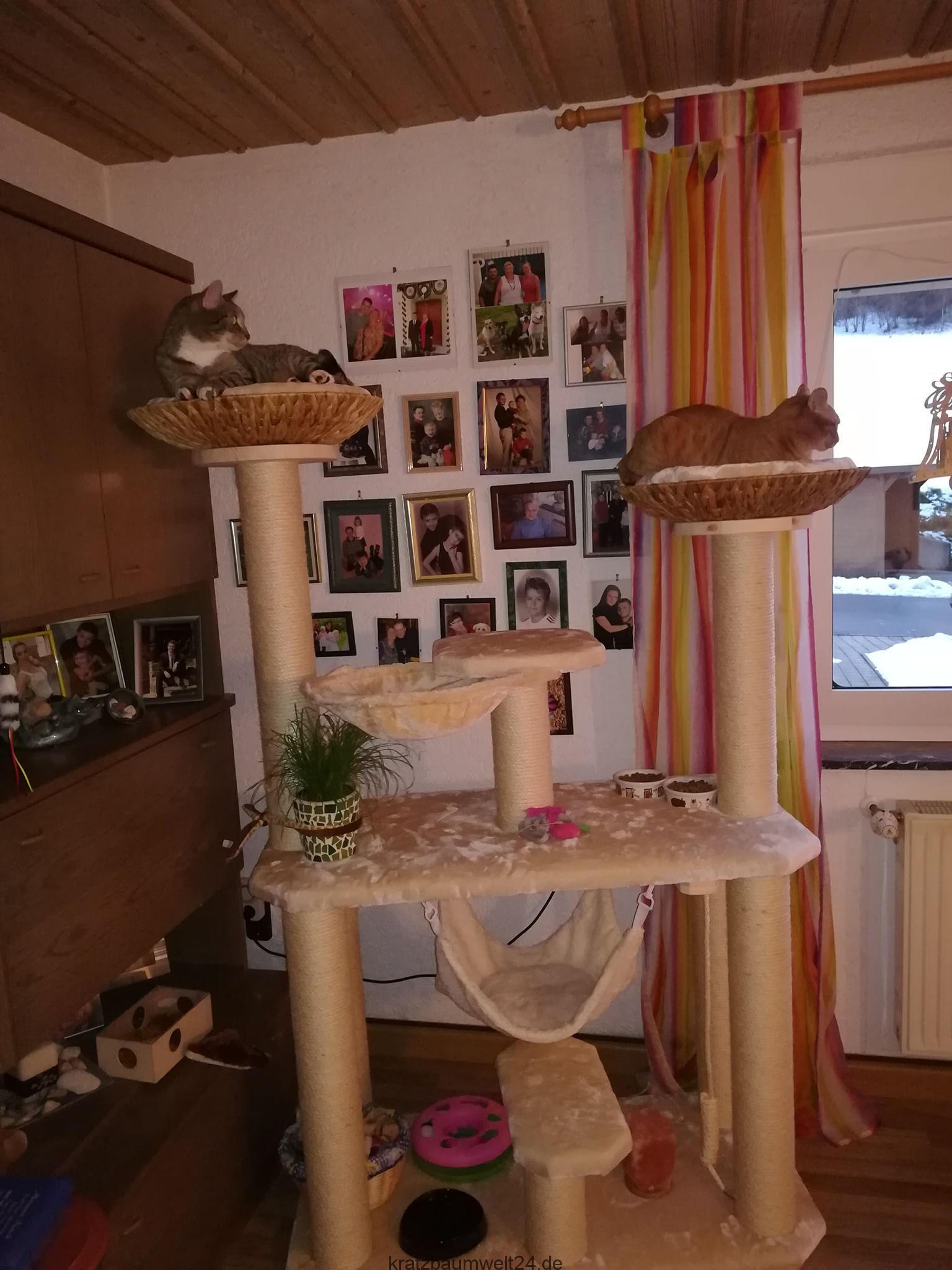 kratzbaum gross kratzbaum f r schwere katzen liegemulden. Black Bedroom Furniture Sets. Home Design Ideas