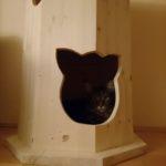 Kratztonne XXL für Katzen