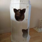 Kratztonne XXL für grosse Katzen