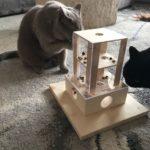 Leckerliebox Intelligenzspielzeug für Katzen