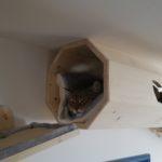 Katzentunnel mit Kissen für Wandmontage