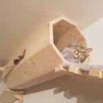 Rolle aus Holz mit Kissen für Katzen