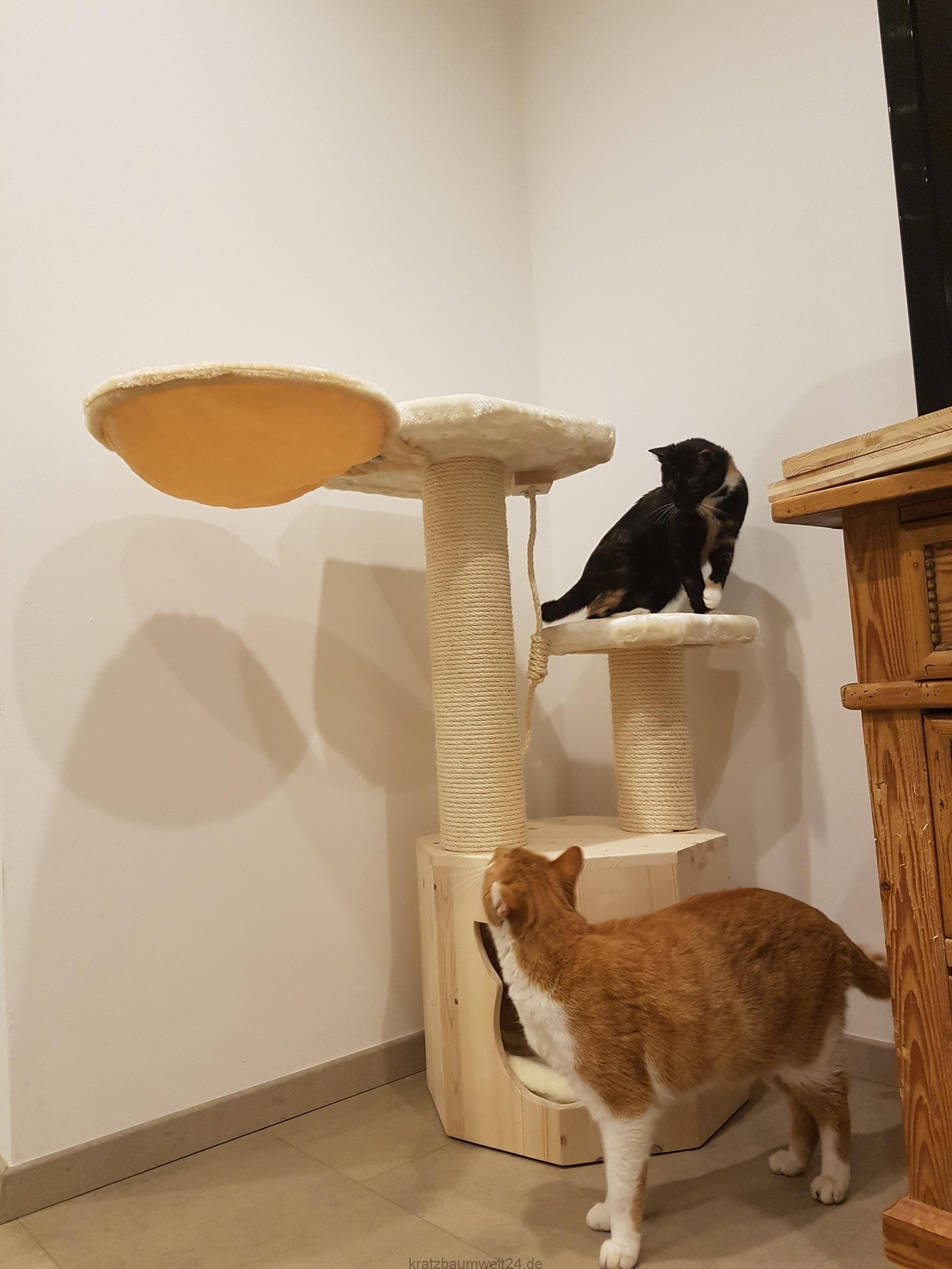 ersatzst mme f r katzen kratzbaum mittel kratzbaum mit gro en liegefl chen h hle f r katzen. Black Bedroom Furniture Sets. Home Design Ideas
