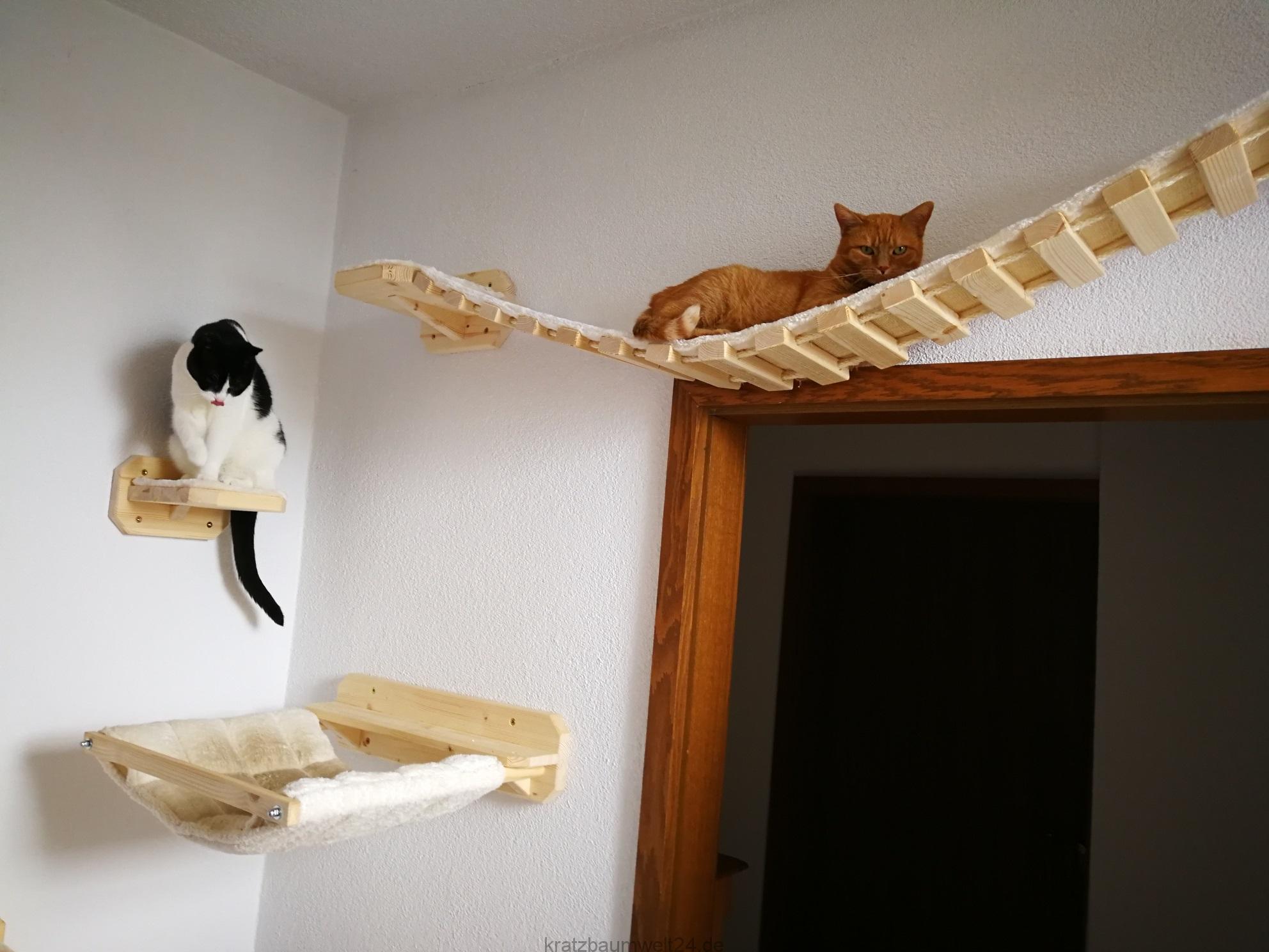 kletterwand f r katzen h ngebr cken auf wunschl nge. Black Bedroom Furniture Sets. Home Design Ideas