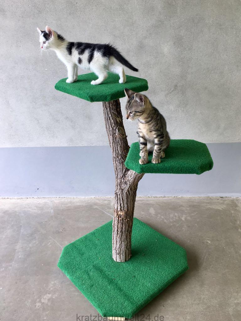 outdoor kratzbaum kratzbaum für den außenbereich stabiler kratzbaum