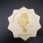 Stern mit Gravur von Katze