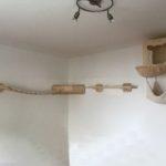 Wandsysteme für Katzen