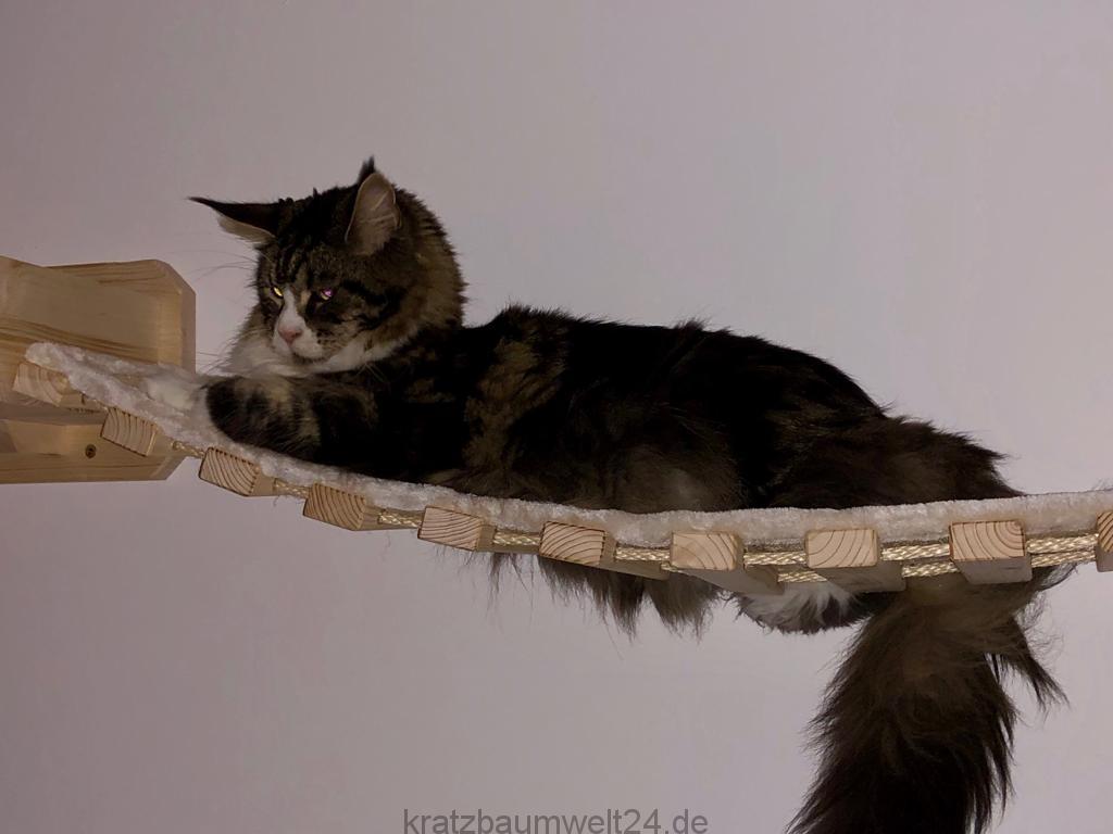 h ngebr cke f r katzen katzenbaum catwalk f r katzen. Black Bedroom Furniture Sets. Home Design Ideas