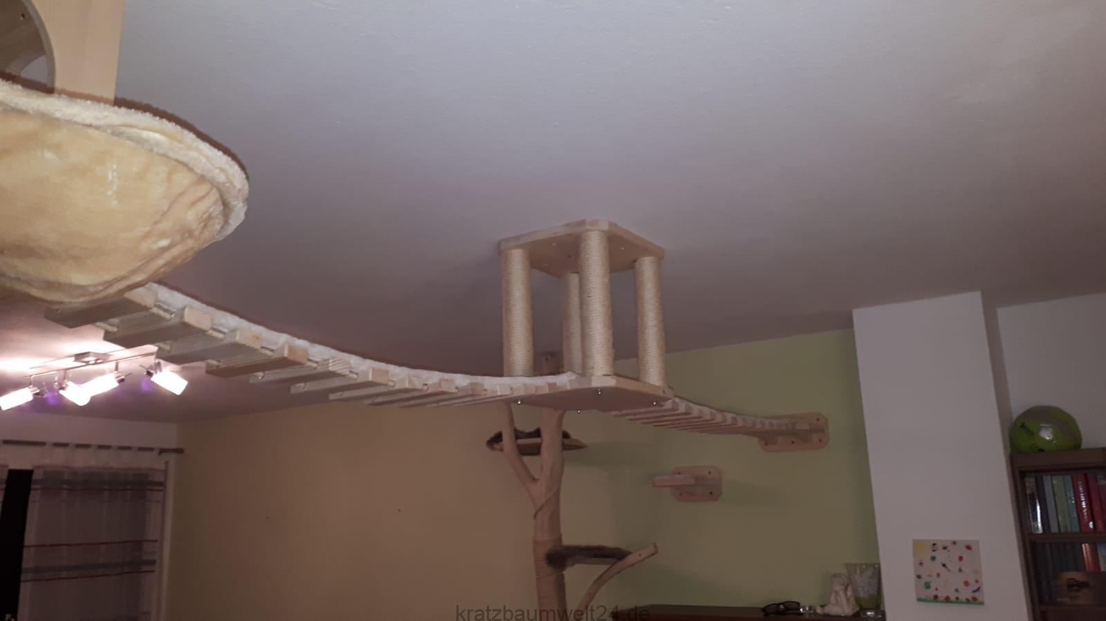 kletterlandschaft f r katzen deckenhalter f r katzen. Black Bedroom Furniture Sets. Home Design Ideas
